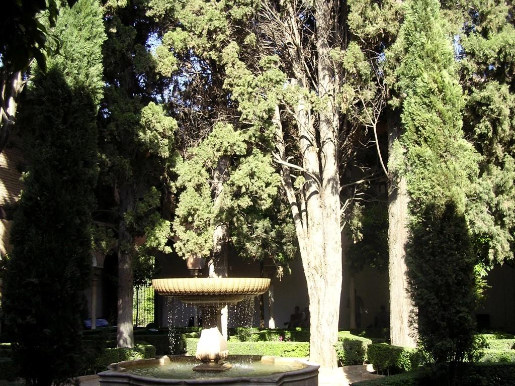 ogrody arabskie