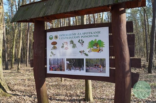 fragment ścieżki dydaktycznej wChojnowskim Parku Krajobrazowym