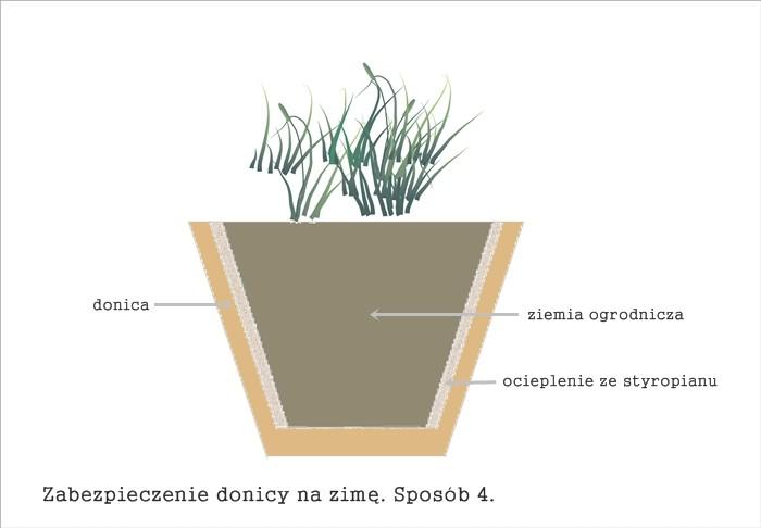 zimowanie roślin