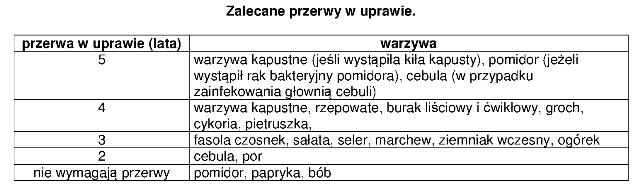 warzywnik