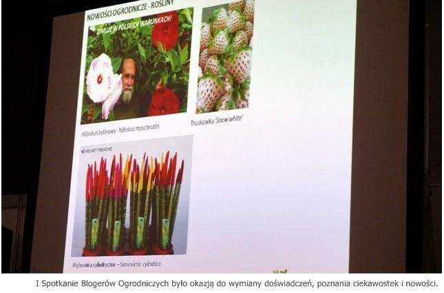 spotkanie blogerów ogrodniczych
