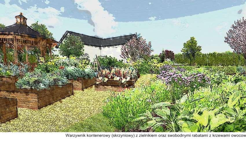 ogród przydomowy warzywnik