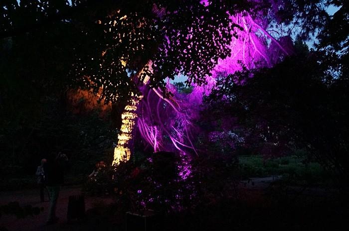 noc muzeów warszawa