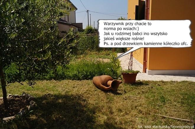 ogrody przydomowe