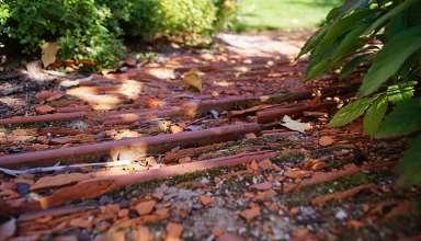 ogrodowa ścieżka z dachówki