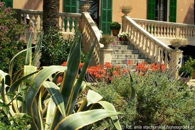 ogród śródziemnomorski (2)