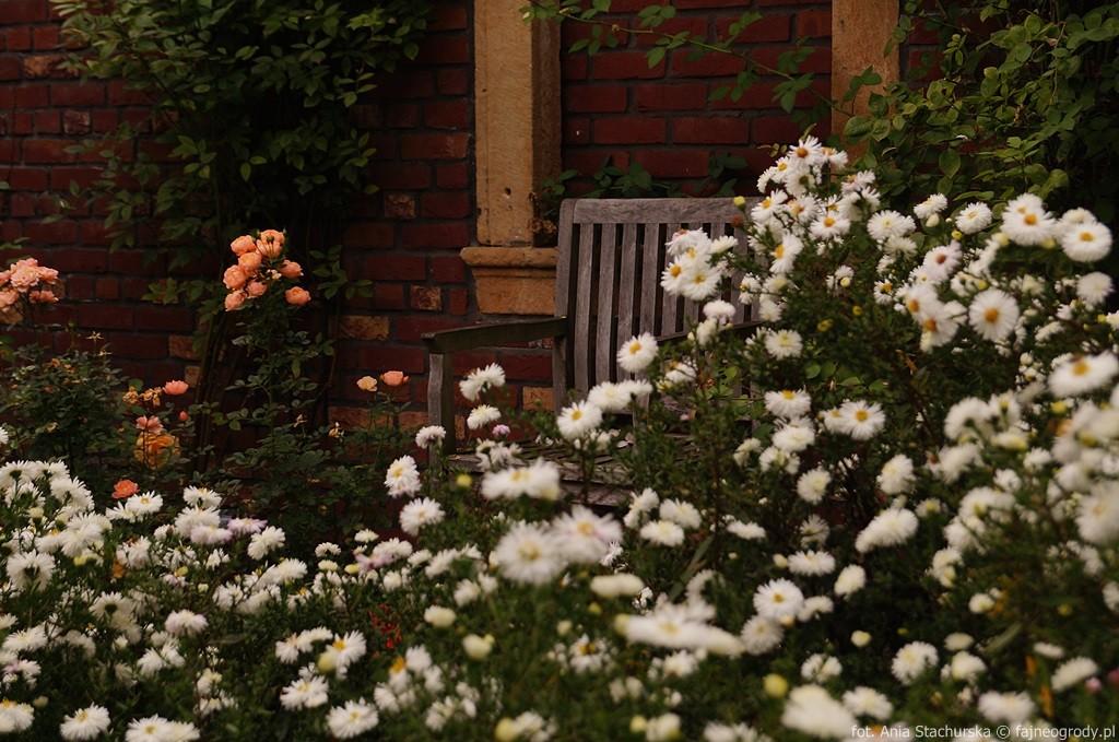 szkółka szmit ogródy
