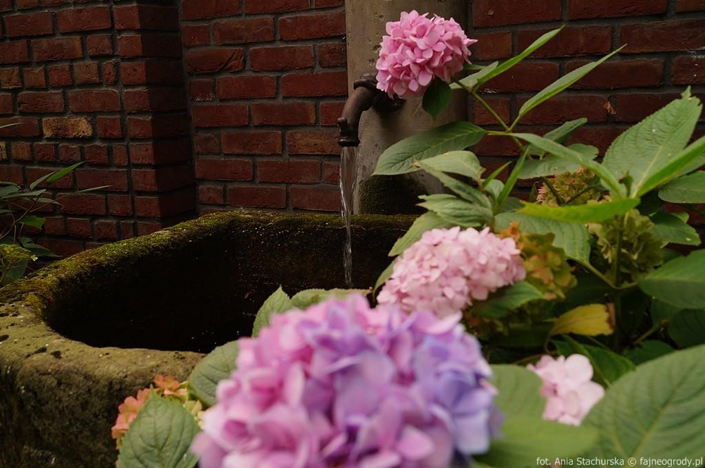 woda w ogrodzie szmit