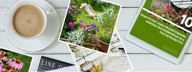 Kurs projektowania ogrodu