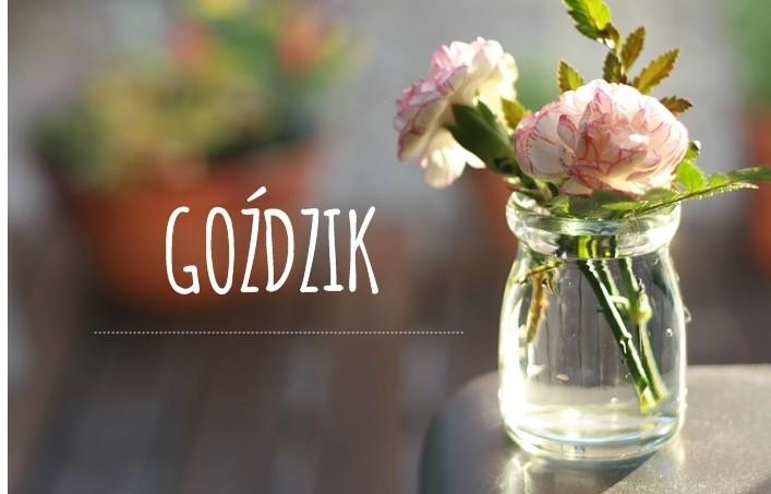 Gozdzik Symbol Prl I Magiczny Kwiat Zeusa