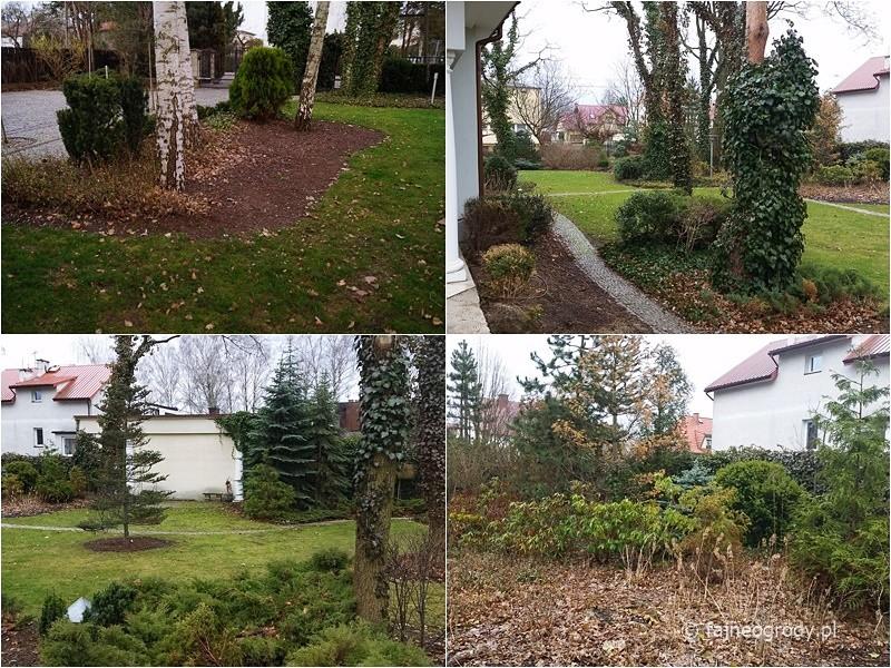 rewitalizacja starego ogrodu