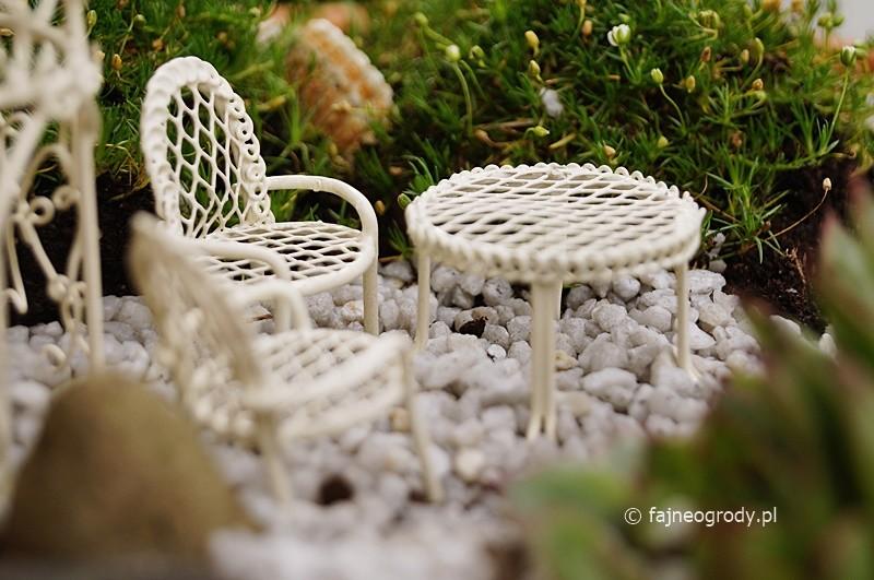 mini ogródek wróżek
