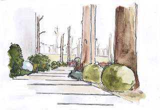 Projekt leśnego ogrodu