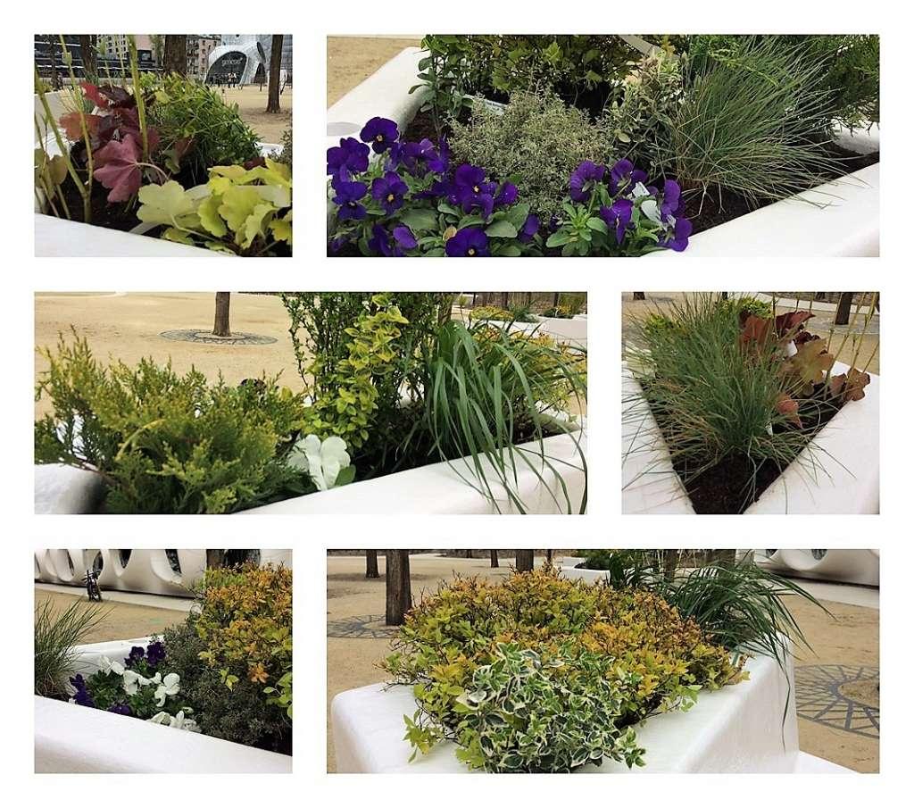 miejskie warsztaty ogrodnicze
