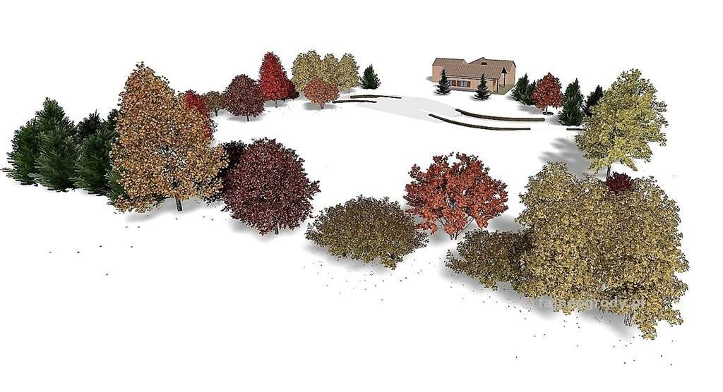 projekt dużego ogrodu