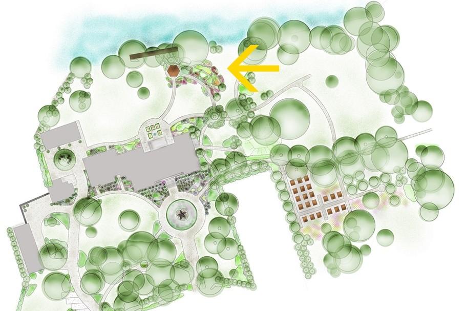 ogród bylinowy projekt ogrodu