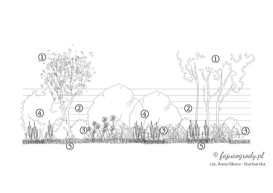 rabaty ogrodowe