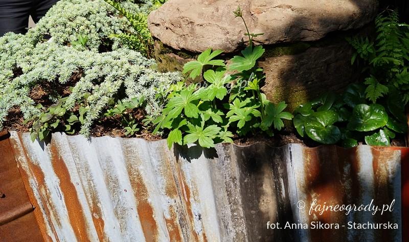 Ogrodzenie zestarej blachy falistej wWalker's Forgotten Quarry Garden.